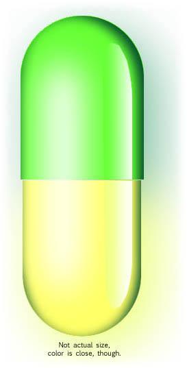 Artist's conception of herbal acamprosate capsule